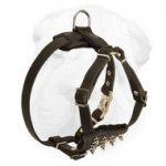 Spiked Shar-Pei Harness for Puppies with D ring and Quick Release Buckle