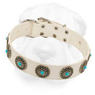White Shar-Pei Collar with Blue Stones for Stylish Walking