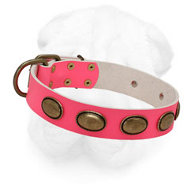 Pink Shar-Pei Collar with Oval Brass Plates