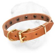 Leather Shar-Pei Collar Decorated with Brass Studs