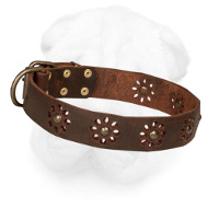 'Spring Melody' Leather Shar Pei Everyday Collar
