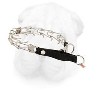 Shar Pei Prong Collar with Quick Lock Buckle, 1/8 inch (3.2 mm) Prong Diameter