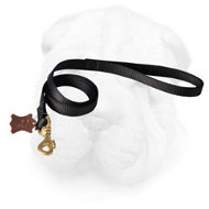 Nylon Shar Pei Leash with Brass Snap Hook