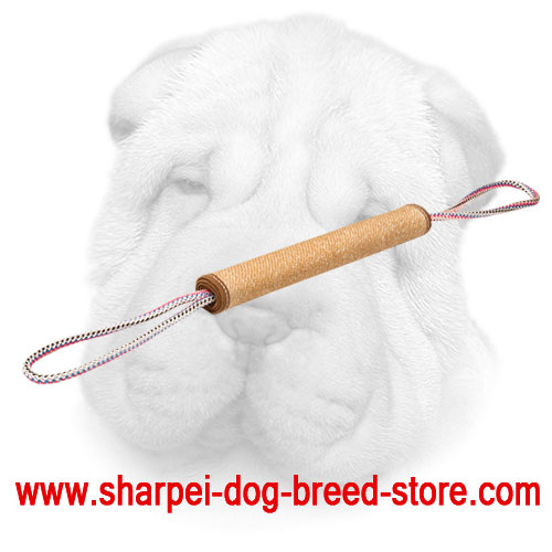 Jute Shar Pei Bite Roll with Stitched Edges