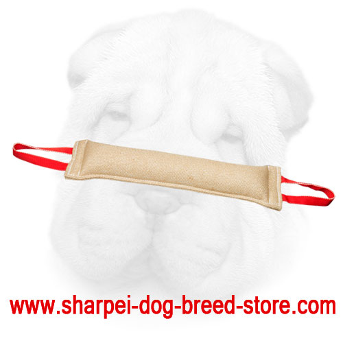 Well Stitched Jute Shar Pei Bite Tug