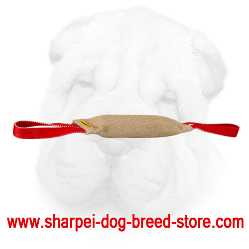Sharpei bite tug with two handles