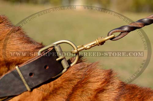 Durable Buckle and D-Ring Made of Brass on Walking Collar for Shar Pei