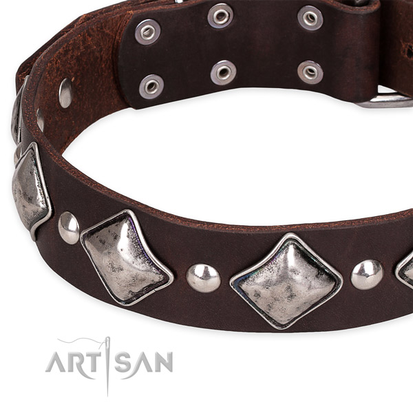 Quick to fasten leather dog collar with extra strong chrome plated buckle