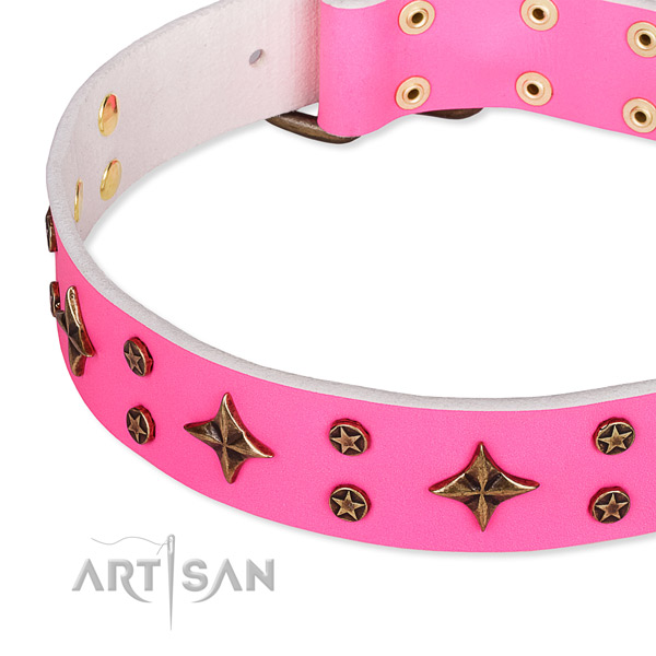 Full grain natural leather dog collar with exceptional embellishments