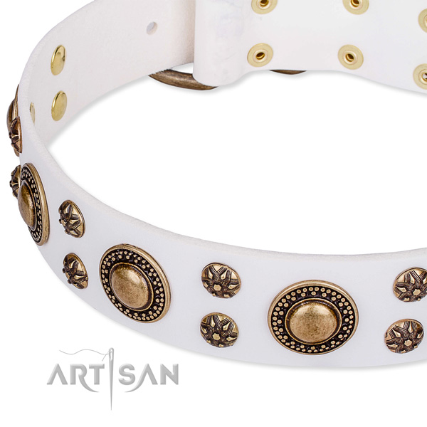 Natural genuine leather dog collar with fashionable studs