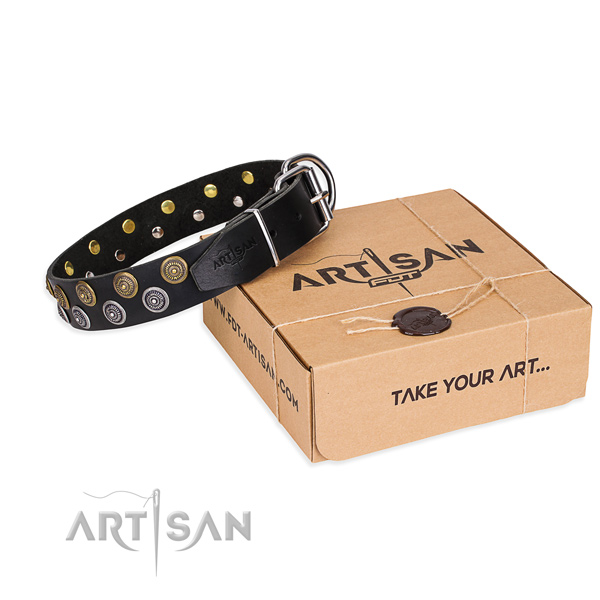 Full grain leather dog collar with embellishments for handy use