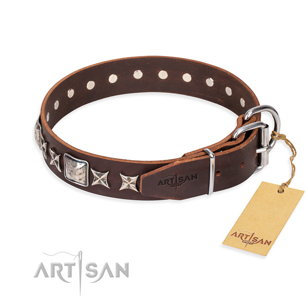 Walking leather collar with adornments for your four-legged friend