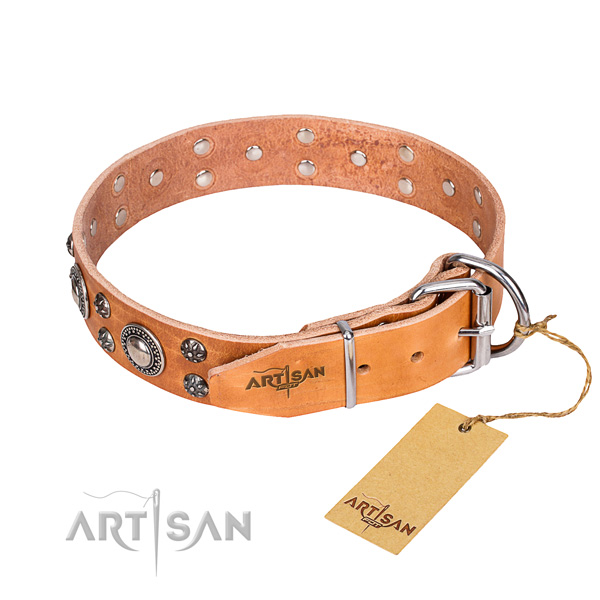 Stylish walking genuine leather collar with studs for your pet