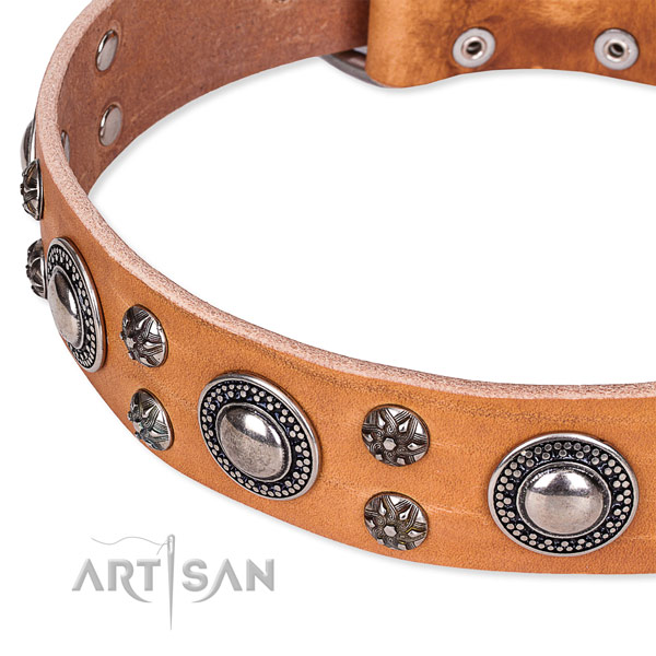 Handy use full grain natural leather collar with rust resistant buckle and D-ring