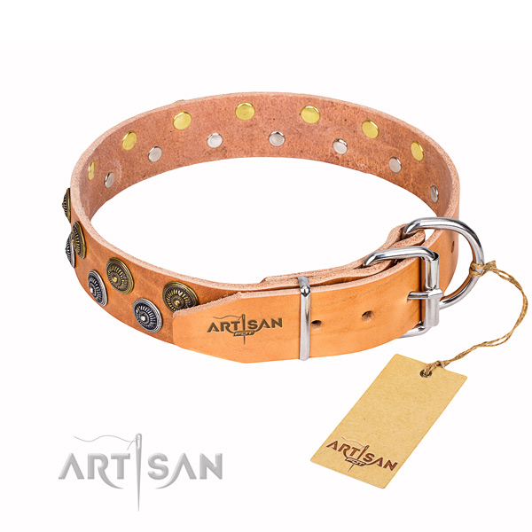 Walking genuine leather collar with decorations for your dog