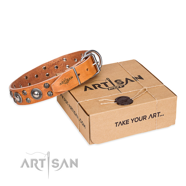 Top notch natural genuine leather dog collar for everyday walking