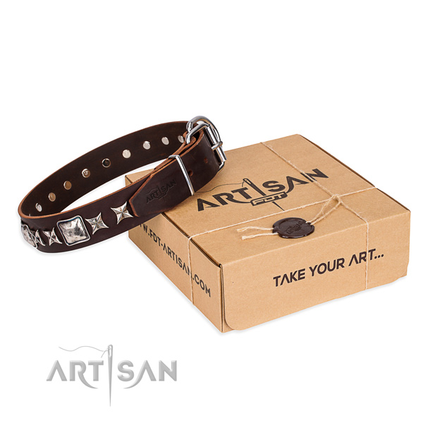 Decorated leather dog collar for everyday walking