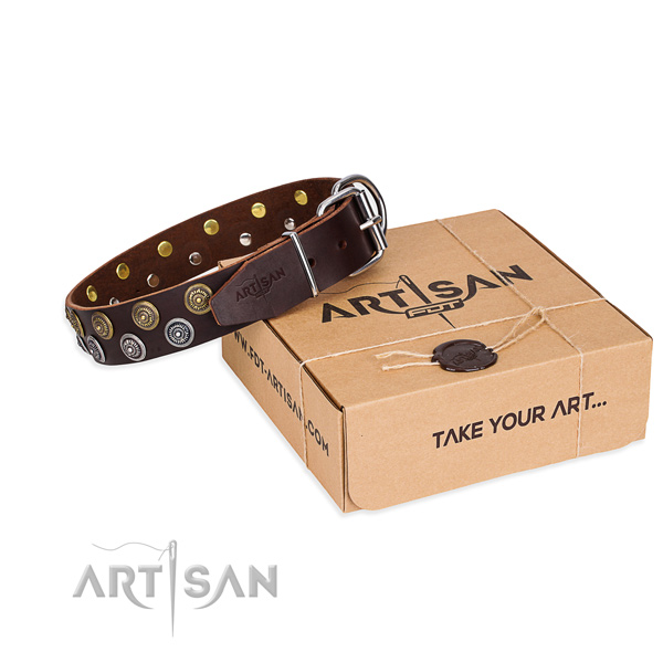Leather dog collar with embellishments for stylish walking