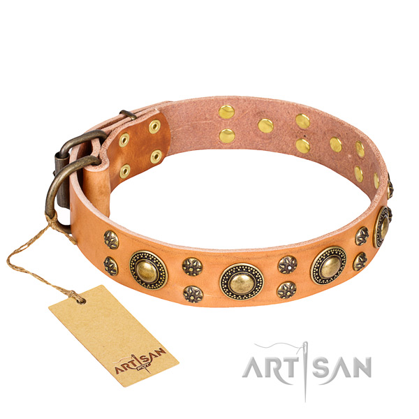 Extraordinary full grain leather dog collar for everyday walking
