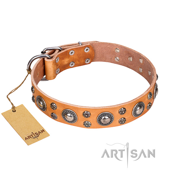 Extraordinary natural genuine leather dog collar for stylish walking