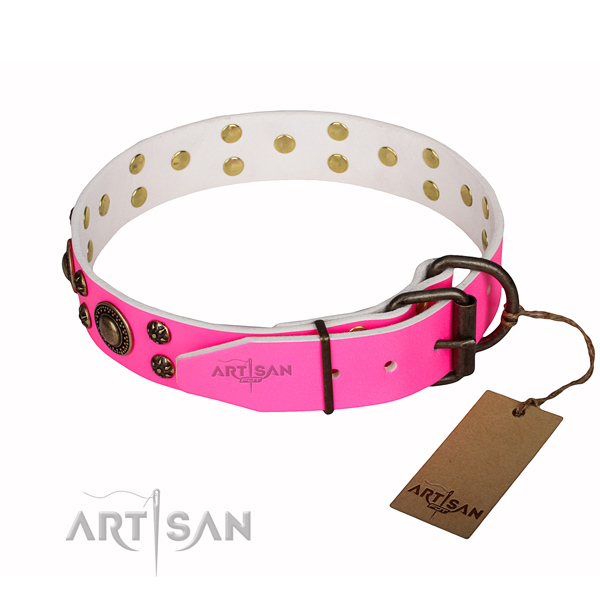 Trendy full grain natural leather dog collar for daily use