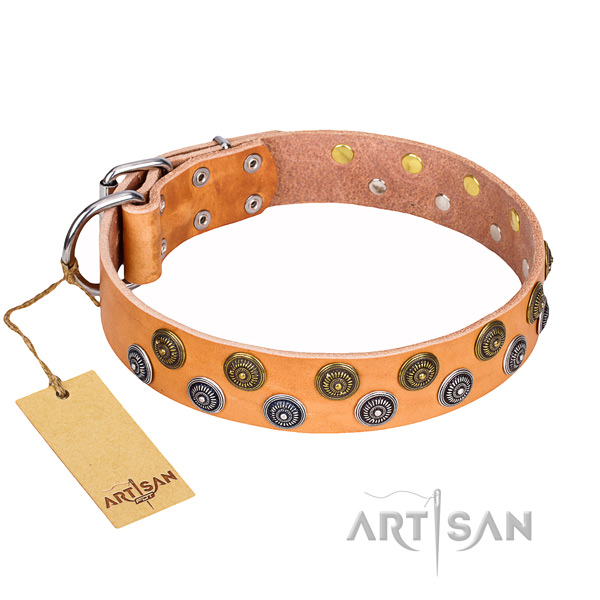 Trendy natural genuine leather dog collar for daily use