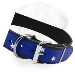 Hand painted with stars and stripes leather buckle collar for Shar Pei
