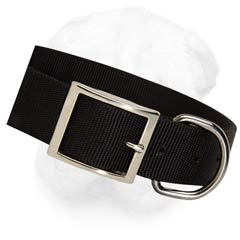 Extra Wide and Durable Nylon Collar for Training and  Walking of Your Shar Pei