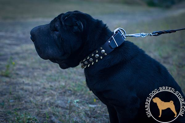 High-quality leather Shar Pei collar