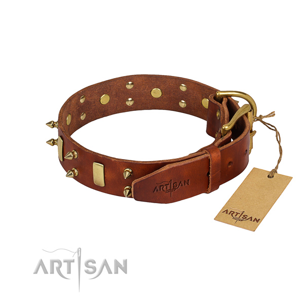 Full grain leather dog collar with smoothly polished leather surface