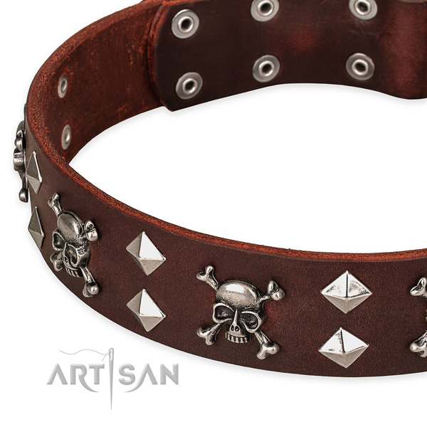 Full grain leather dog collar for reliable use