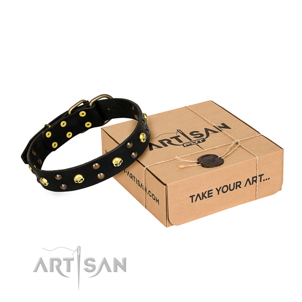 Reliable leather dog collar with strong elements