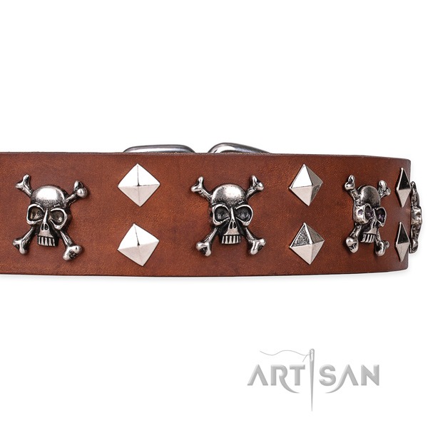 Long-wearing leather dog collar with brass plated hardware