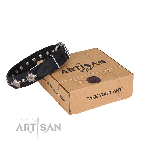 Casual leather dog collar with amazing adornments
