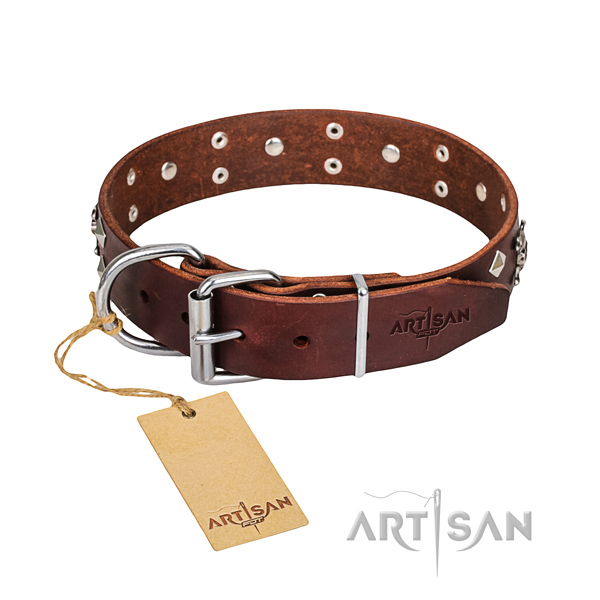 Casual style leather dog collar with extraordinary embellishments