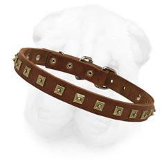 Shar Pei Collar Made of 1 Inch Wide Selected Leather