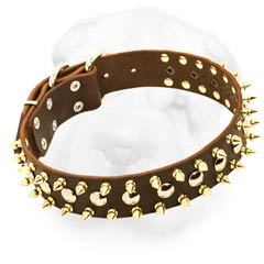 Wide Protective Style Leather Collar with Spikes and Studs