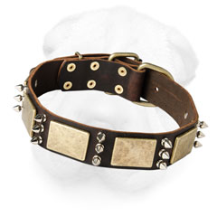 Wide Leather Dog Collar for Shar Pei Breed with Spikes and Plates