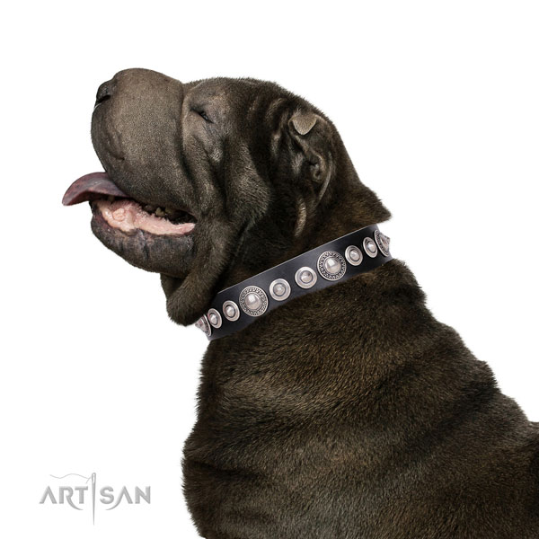 Top notch adorned natural leather dog collar for stylish walking