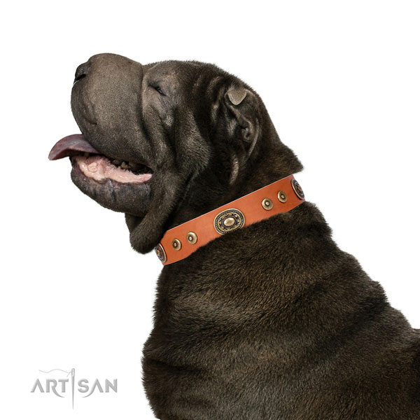 Incredible embellished genuine leather dog collar for everyday walking