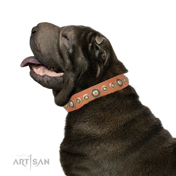 Rust resistant buckle and D-ring on full grain leather dog collar for daily use