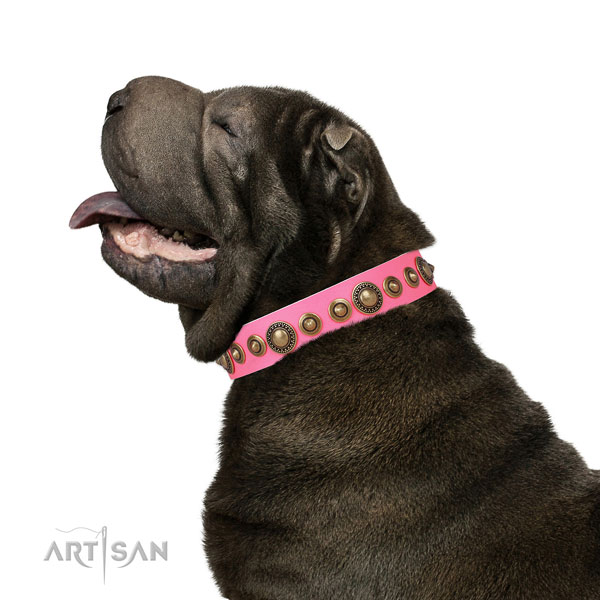 Corrosion proof buckle and D-ring on natural leather dog collar for everyday walking