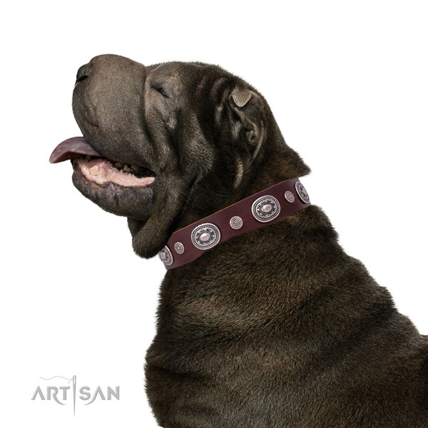 Corrosion proof buckle and D-ring on natural leather dog collar for daily use