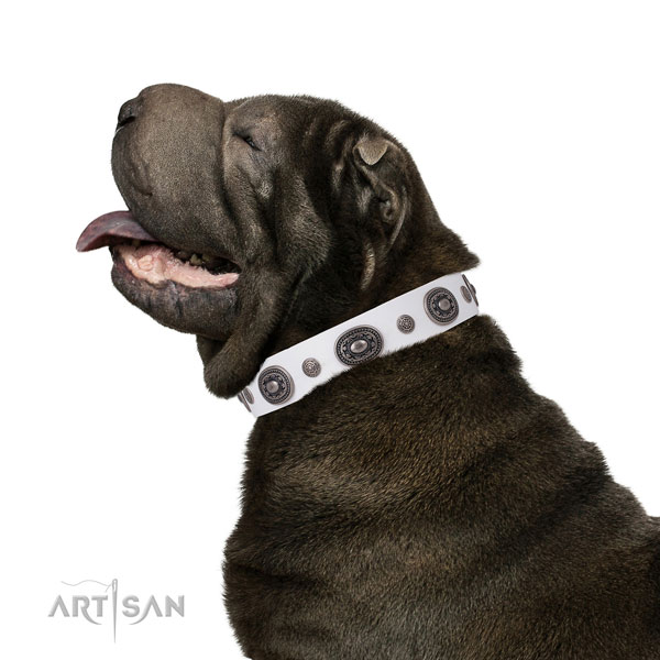 Genuine leather dog collar with rust resistant buckle and D-ring for daily walking