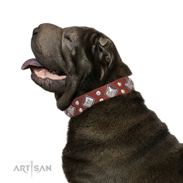 Everyday walking embellished dog collar made of top notch natural leather