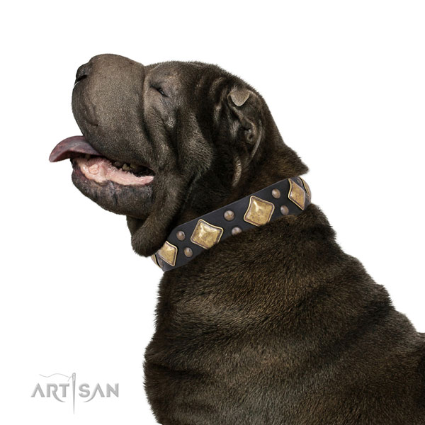 Comfy wearing decorated dog collar made of strong natural leather