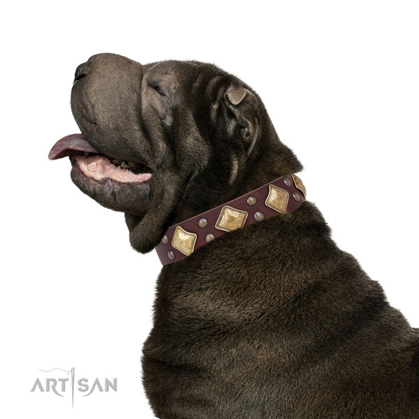 Everyday walking decorated dog collar made of quality leather