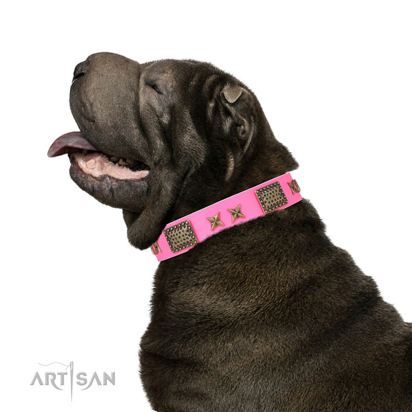 Exceptional adornments on handy use full grain natural leather dog collar