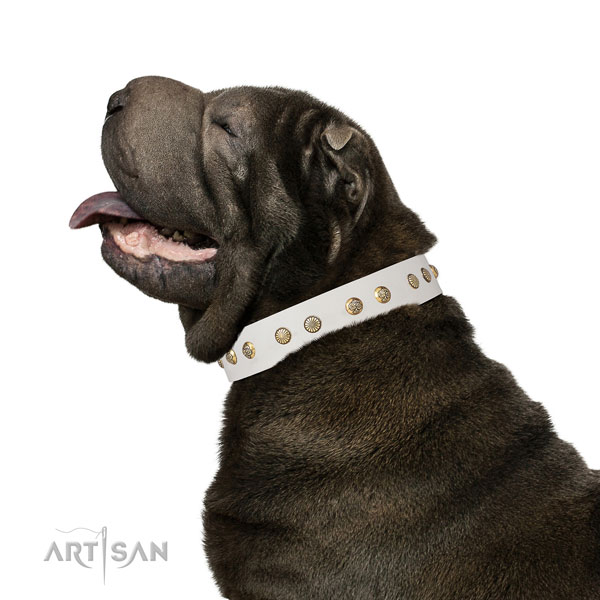 Remarkable decorations on comfy wearing full grain natural leather dog collar