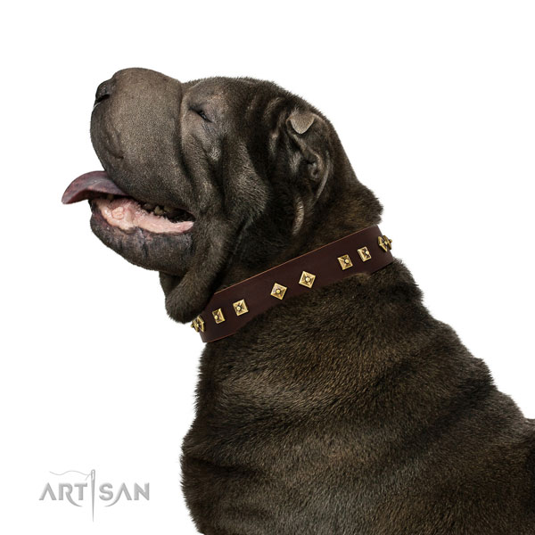 Inimitable adornments on walking genuine leather dog collar